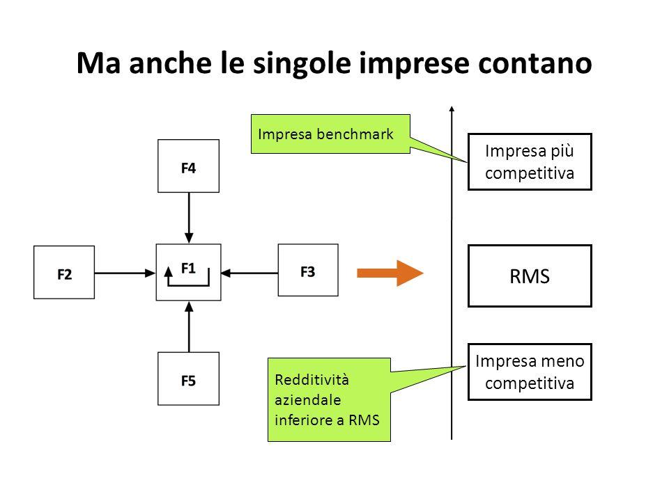 Ma anche le singole imprese contano RMS Impresa più competitiva Impresa meno competitiva Redditività aziendale inferiore a RMS Impresa benchmark