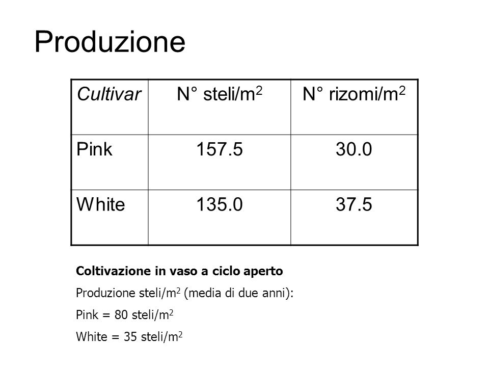 Produzione CultivarN° steli/m 2 N° rizomi/m 2 Pink157.530.0 White135.037.5 Coltivazione in vaso a ciclo aperto Produzione steli/m 2 (media di due anni
