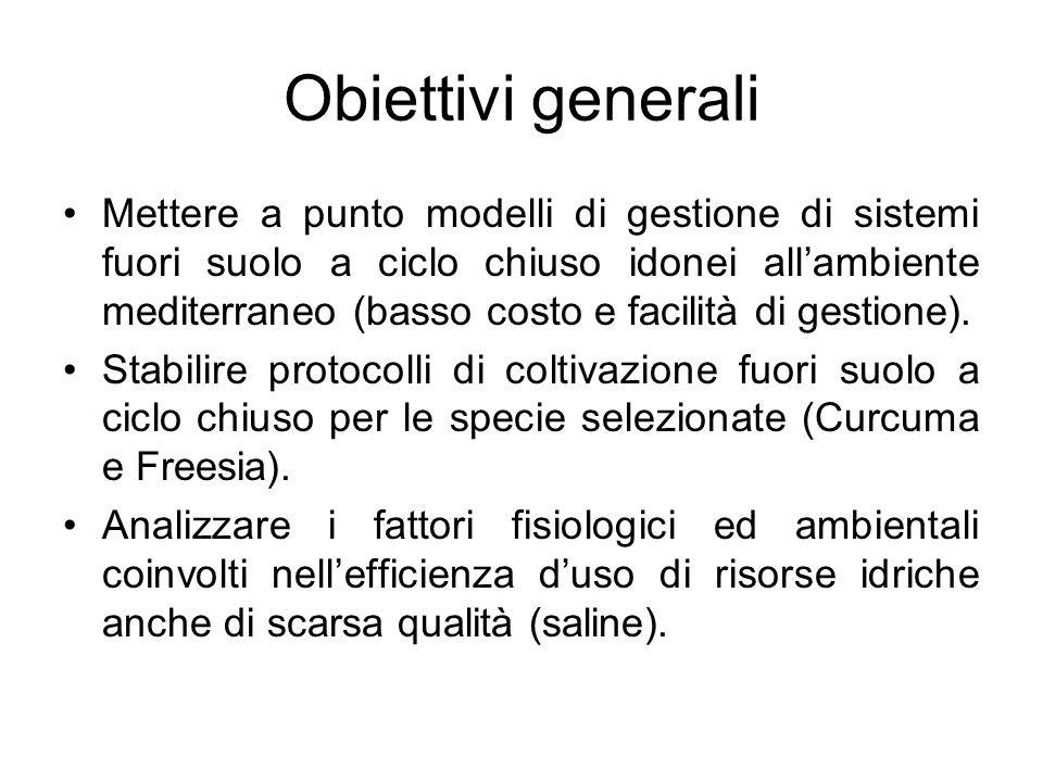 Obiettivi generali Mettere a punto modelli di gestione di sistemi fuori suolo a ciclo chiuso idonei all'ambiente mediterraneo (basso costo e facilità