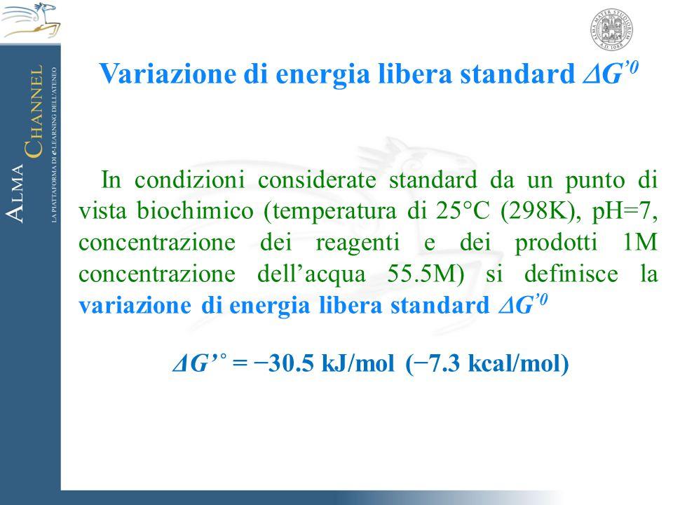 Variazione di energia libera standard  G '0 In condizioni considerate standard da un punto di vista biochimico (temperatura di 25°C (298K), pH=7, con