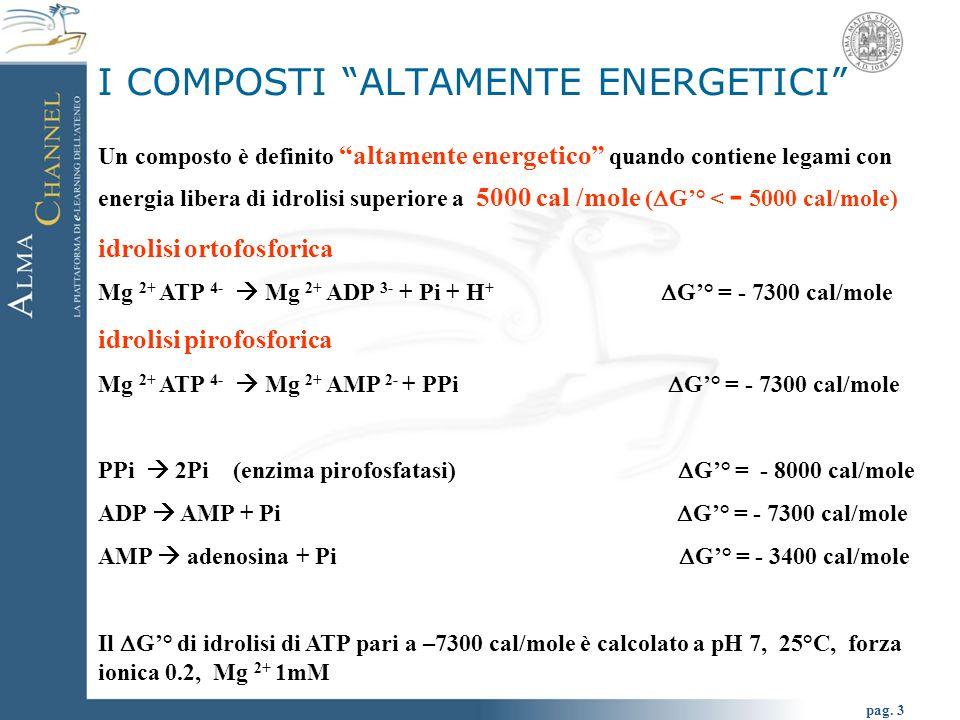 """pag. 3 Un composto è definito """"altamente energetico"""" quando contiene legami con energia libera di idrolisi superiore a 5000 cal /mole (  G'° < - 5000"""