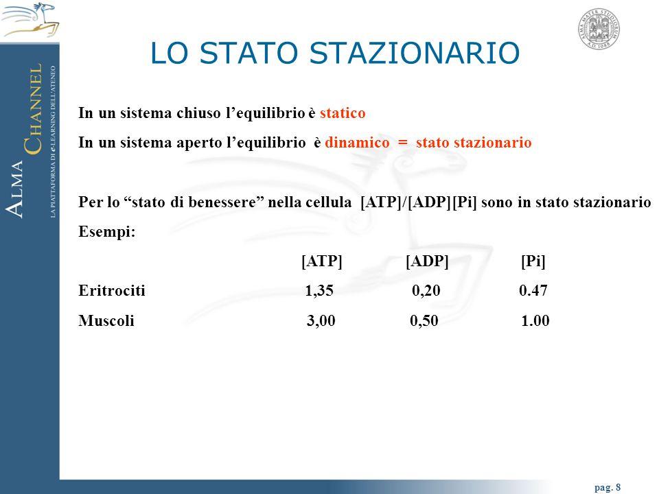 """pag. 8 In un sistema chiuso l'equilibrio è statico In un sistema aperto l'equilibrio è dinamico = stato stazionario Per lo """"stato di benessere"""" nella"""