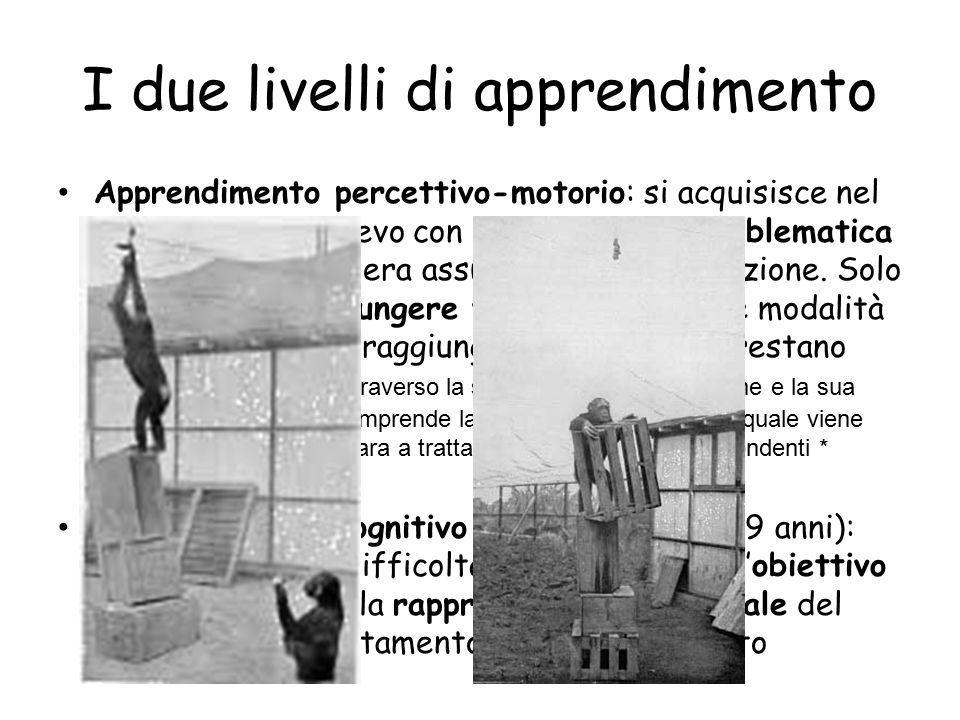 I due livelli di apprendimento Apprendimento percettivo-motorio: si acquisisce nel confronto dell'allievo con una situazione problematica che implica una libera assunzione di informazione.