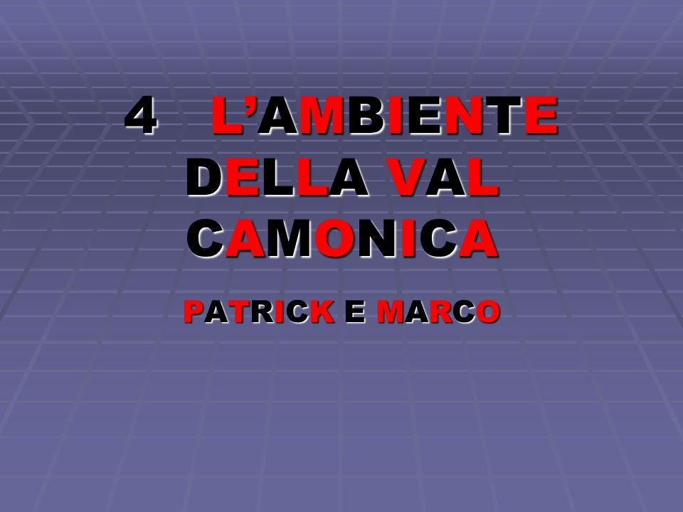4 L'AMBIENTE DELLA VAL CAMONICA PATRICK E MARCOPATRICK E MARCOPATRICK E MARCOPATRICK E MARCO