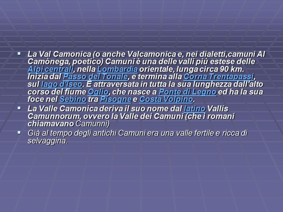 LLLLa Val Camonica (o anche Valcamonica e, nei dialetti,camuni Al Camònega, poetico) Camuni è una delle valli più estese delle AAAA llll pppp iiii c c c c eeee nnnn tttt rrrr aaaa llll iiii, nella L L L L L oooo mmmm bbbb aaaa rrrr dddd iiii aaaa orientale, lunga circa 90 km.