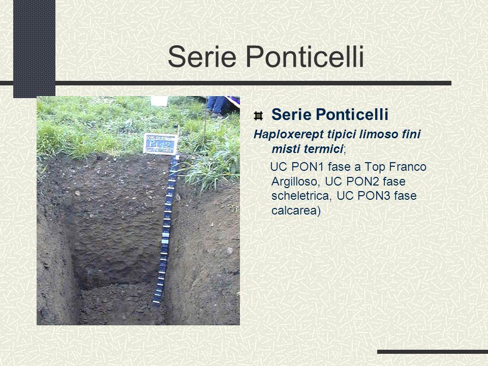 Serie Ponticelli Haploxerept tipici limoso fini misti termici; UC PON1 fase a Top Franco Argilloso, UC PON2 fase scheletrica, UC PON3 fase calcarea)