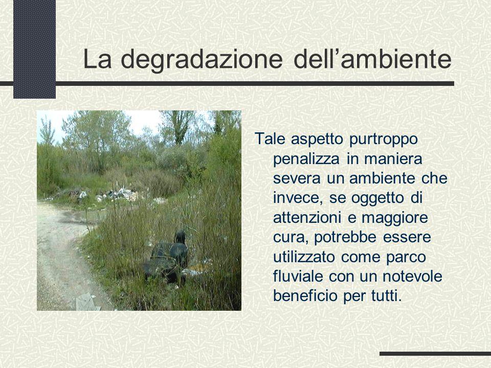 La degradazione dell'ambiente Tale aspetto purtroppo penalizza in maniera severa un ambiente che invece, se oggetto di attenzioni e maggiore cura, potrebbe essere utilizzato come parco fluviale con un notevole beneficio per tutti.