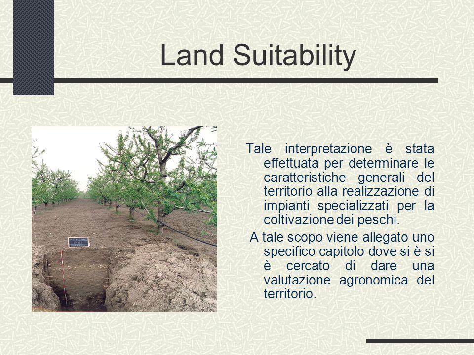 Land Suitability Tale interpretazione è stata effettuata per determinare le caratteristiche generali del territorio alla realizzazione di impianti specializzati per la coltivazione dei peschi.