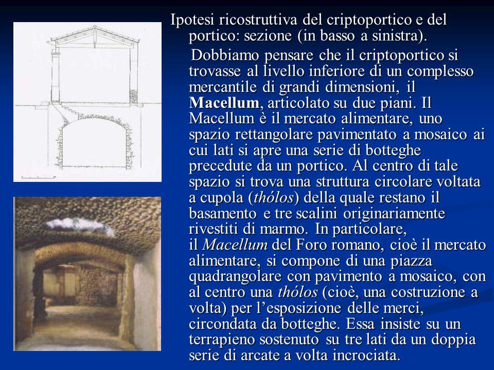 Ipotesi ricostruttiva del criptoportico e del portico: sezione (in basso a sinistra).