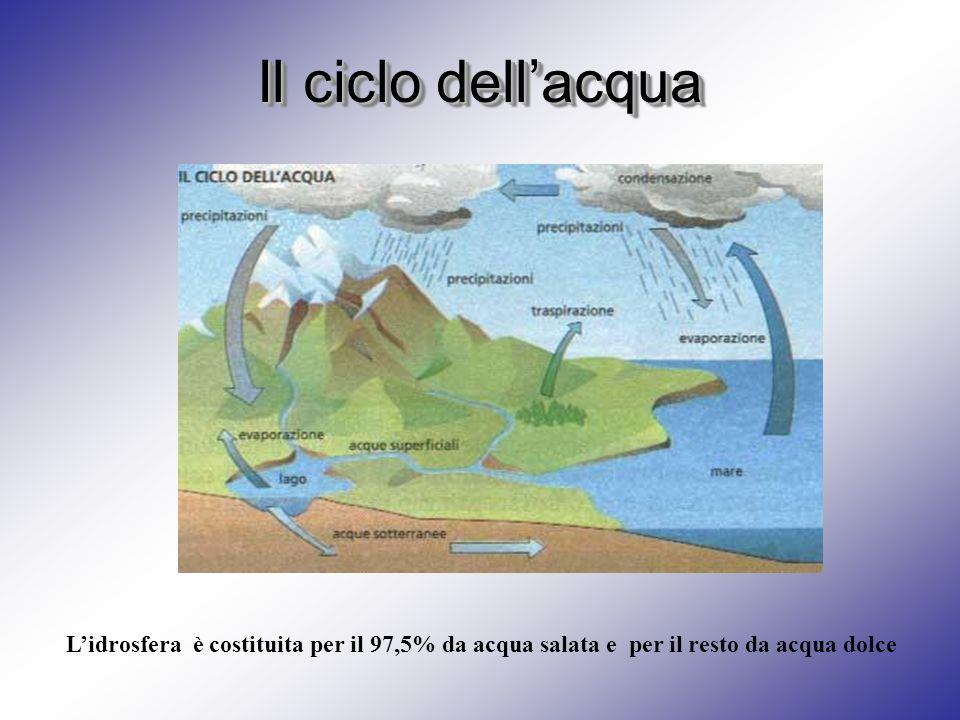 Il ciclo dell'acqua L'idrosfera è costituita per il 97,5% da acqua salata e per il resto da acqua dolce