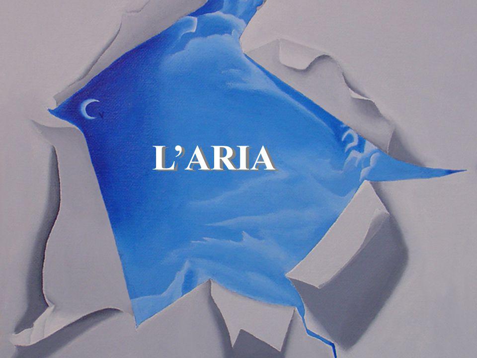 L'ARIA
