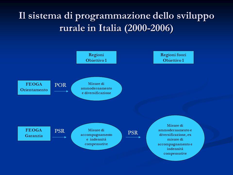 Il sistema di programmazione dello sviluppo rurale in Italia (2000-2006) Regioni Obiettivo 1 Regioni fuori Obiettivo 1 FEOGA Orientamento Misure di ammodernamento e diversificazione POR FEOGA Garanzia PSR Misure di accompagnamento e indennità compensative Misure di ammodernamento e diversificazione, ex misure di accompagnamento e indennità compensative PSR