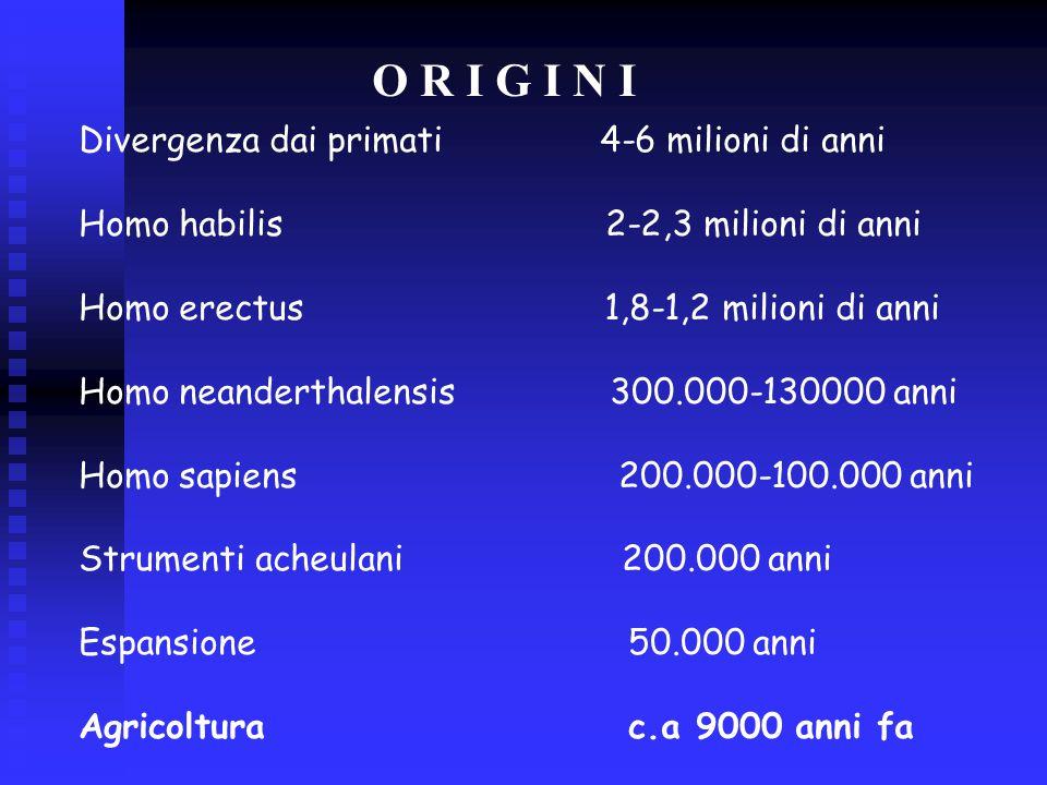 O R I G I N I Divergenza dai primati 4-6 milioni di anni Homo habilis 2-2,3 milioni di anni Homo erectus 1,8-1,2 milioni di anni Homo neanderthalensis 300.000-130000 anni Homo sapiens 200.000-100.000 anni Strumenti acheulani 200.000 anni Espansione 50.000 anni Agricoltura c.a 9000 anni fa