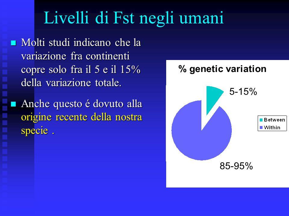 Livelli di Fst negli umani Molti studi indicano che la variazione fra continenti copre solo fra il 5 e il 15% della variazione totale.