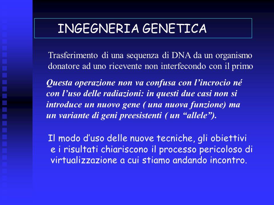 INGEGNERIA GENETICA Trasferimento di una sequenza di DNA da un organismo donatore ad uno ricevente non interfecondo con il primo Questa operazione non va confusa con l'incrocio né con l'uso delle radiazioni: in questi due casi non si introduce un nuovo gene ( una nuova funzione) ma un variante di geni preesistenti ( un allele ).