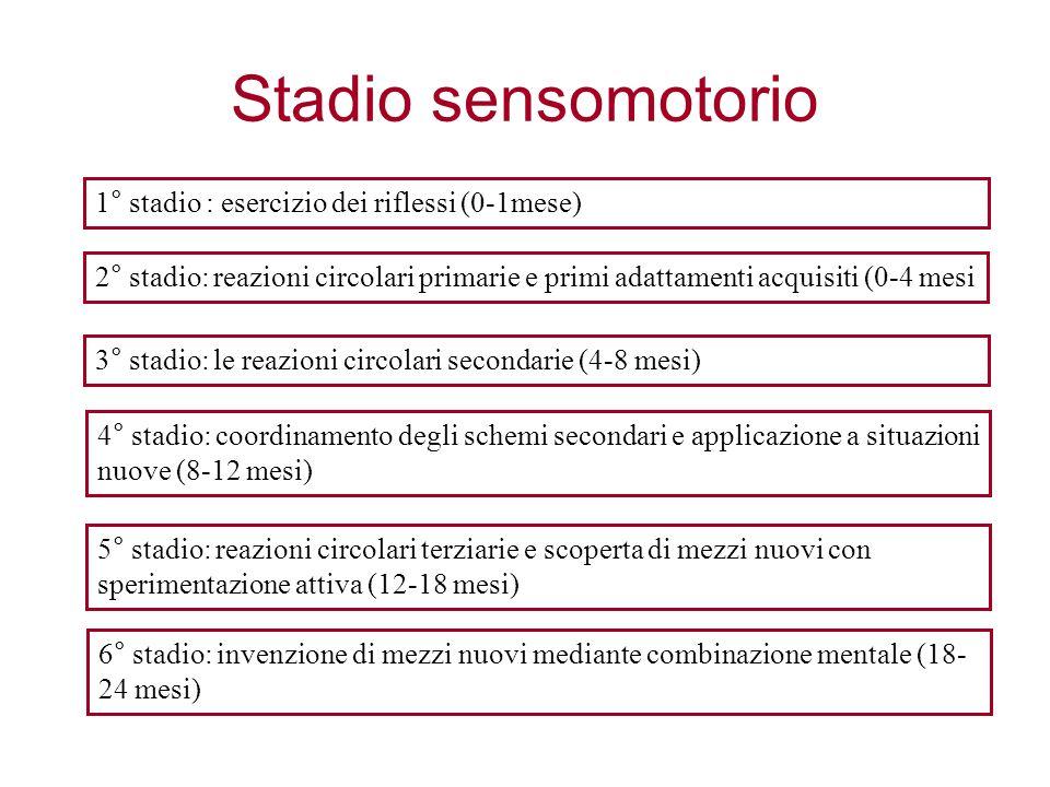 1° stadio : esercizio dei riflessi (0-1mese) 2° stadio: reazioni circolari primarie e primi adattamenti acquisiti (0-4 mesi 3° stadio: le reazioni cir
