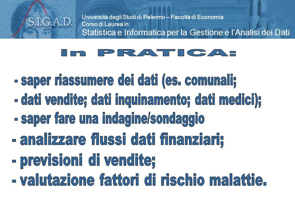 Università degli Studi di Palermo – Facoltà di Economia Corso di Laurea in: Statistica e Informatica per la Gestione e l'Analisi dei Dati