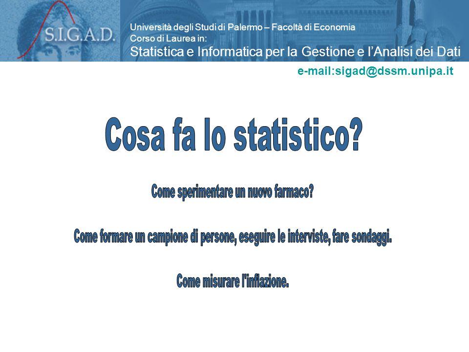 Università degli Studi di Palermo – Facoltà di Economia Corso di Laurea in: Statistica e Informatica per la Gestione e l'Analisi dei Dati e-mail:sigad