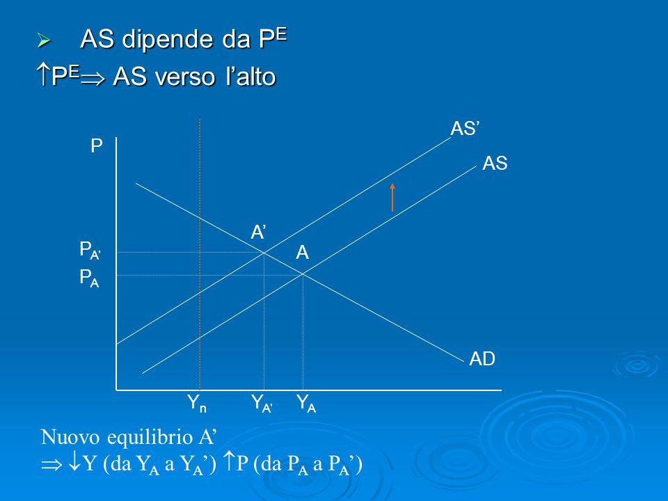   P E  l'equilibrio dell'economia è passato da A a A' Ma A' non è l'equilibrio finale del sistema Infatti in A'  Y>Y n e P>P E   l'aggiustamento delle aspettative prosegue finchè Y=Y n    P E  AS' verso l'alto
