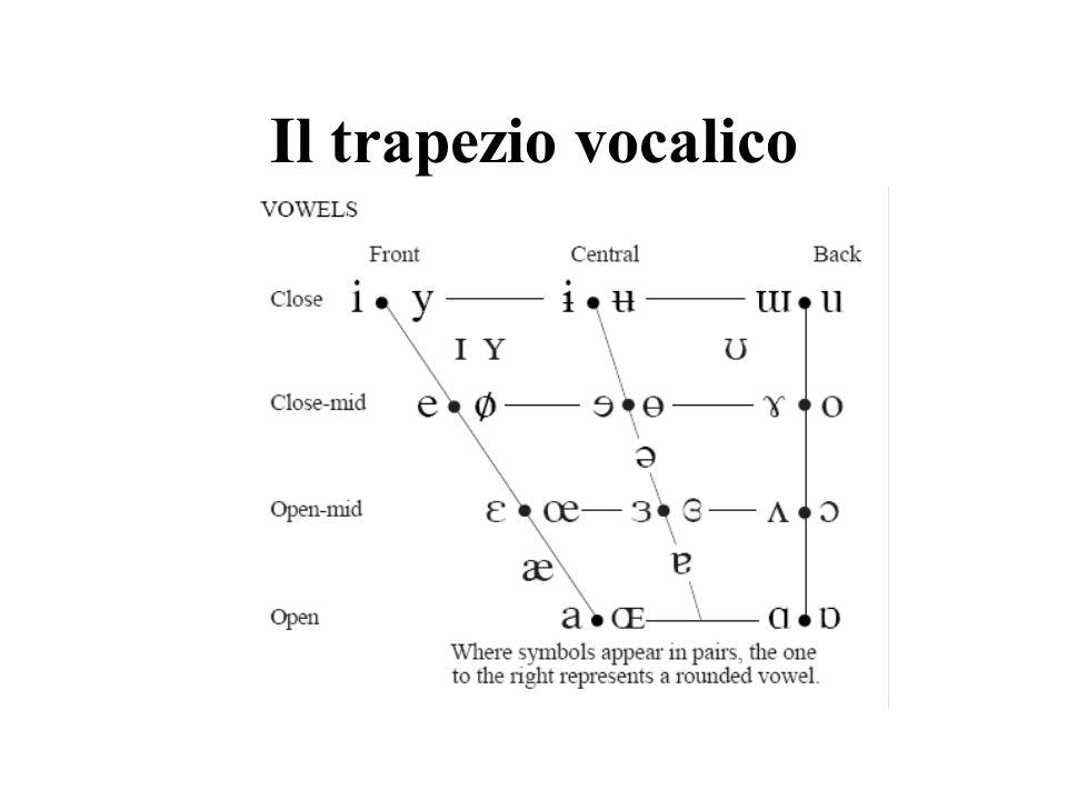 I dittonghi Approssimante + vocale in una stessa sillaba Dittongo ascendente: approssimante + vocale accentata [j] [w] semiconsonanti Dittongo discendente: vocale accentata + approssimante [i] [u] semivocali Iato: combinazione di due vocali appartenenti a sillabe diverse