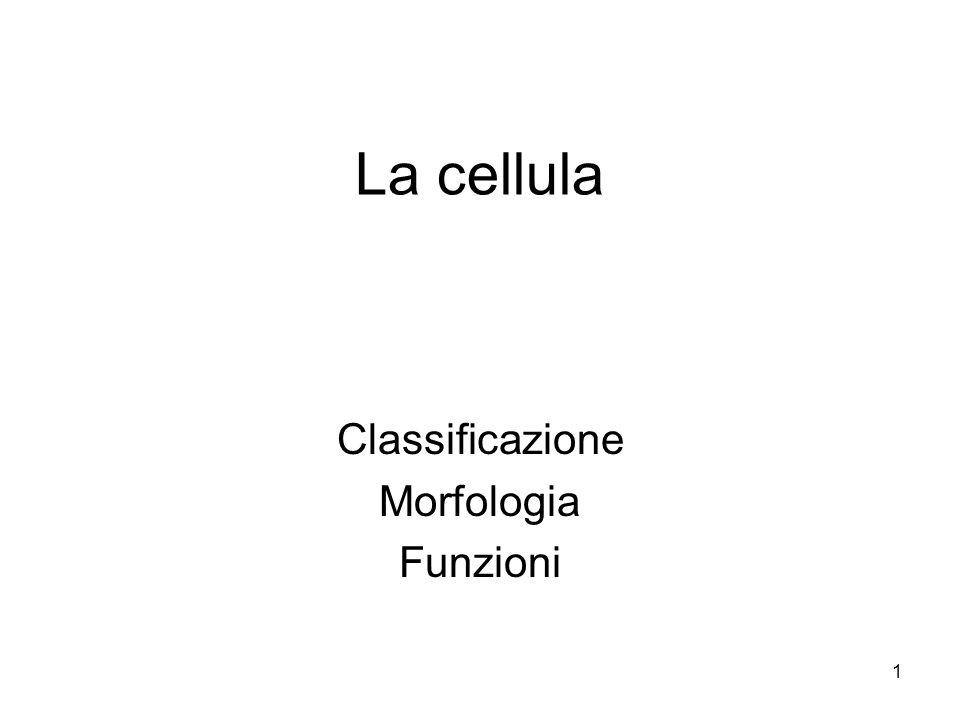 1 La cellula Classificazione Morfologia Funzioni