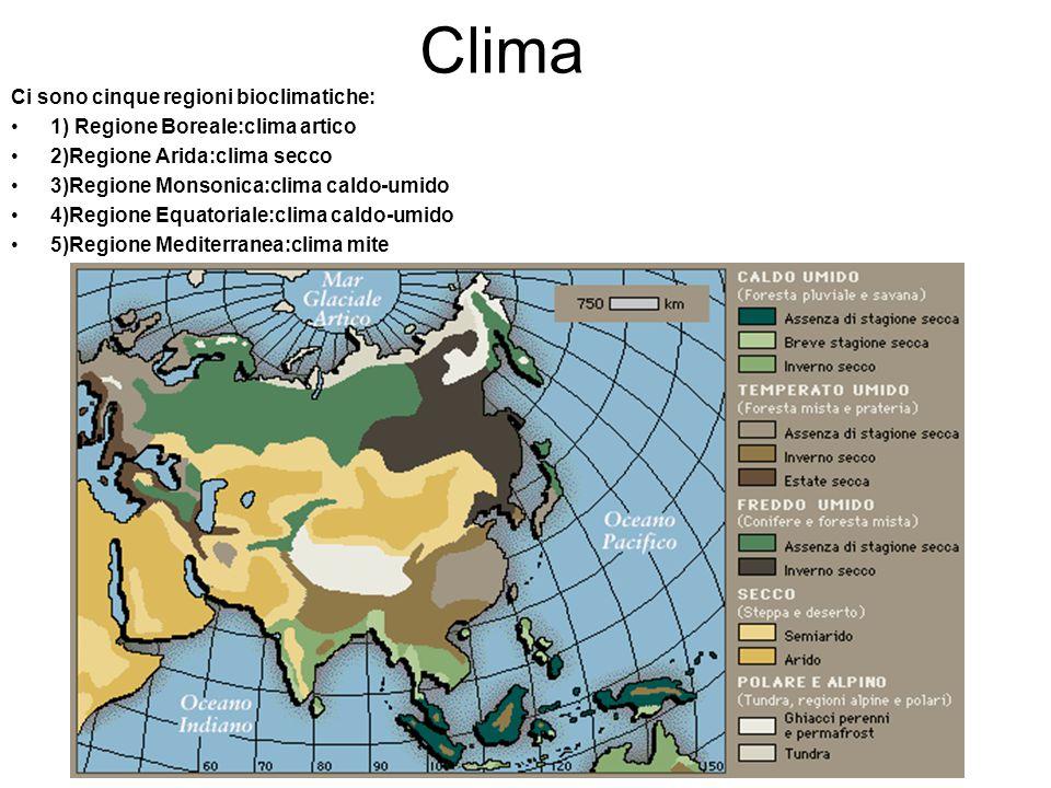 Clima Ci sono cinque regioni bioclimatiche: 1) Regione Boreale:clima artico 2)Regione Arida:clima secco 3)Regione Monsonica:clima caldo-umido 4)Region