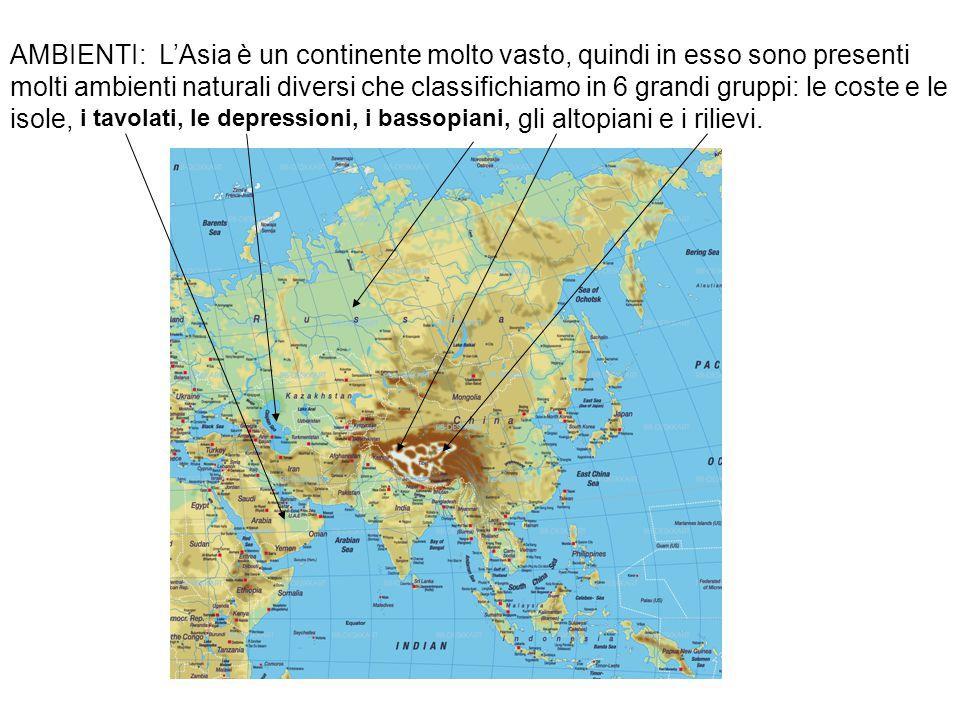 AMBIENTI: L'Asia è un continente molto vasto, quindi in esso sono presenti molti ambienti naturali diversi che classifichiamo in 6 grandi gruppi: le c