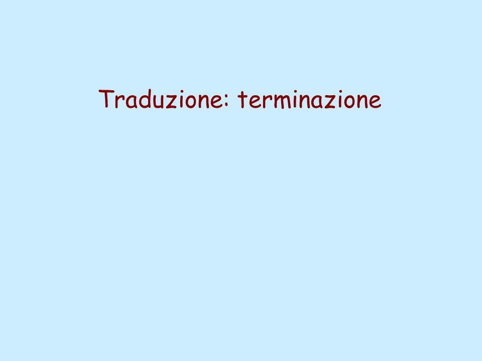 Traduzione: terminazione