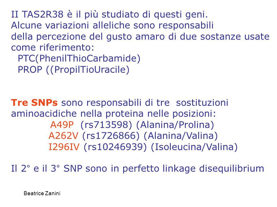 Beatrice Zanini II TAS2R38 è il più studiato di questi geni. Alcune variazioni alleliche sono responsabili della percezione del gusto amaro di due sos
