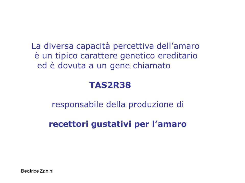 Beatrice Zanini TAS2R38 E' fatto di un singolo esone codificante un recettore a serpentina della lunghezza media di 330 aminoacidi.