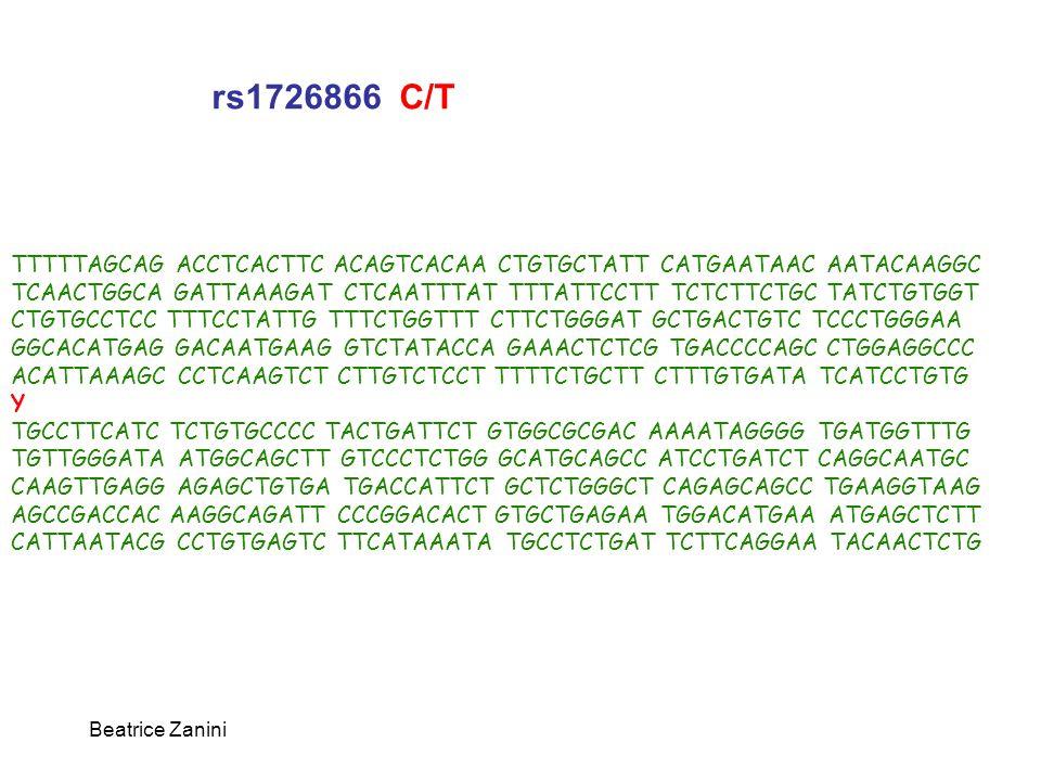 Beatrice Zanini TTTTTAGCAG ACCTCACTTC ACAGTCACAA CTGTGCTATT CATGAATAAC AATACAAGGC TCAACTGGCA GATTAAAGAT CTCAATTTAT TTTATTCCTT TCTCTTCTGC TATCTGTGGT CT