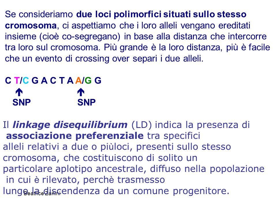 Beatrice Zanini Il linkage disequilibrium (LD) indica la presenza di associazione preferenziale tra specifici alleli relativi a due o pi ù loci, prese
