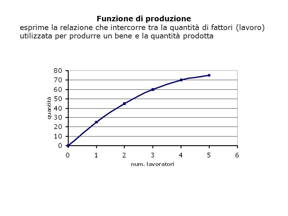 Funzione di produzione esprime la relazione che intercorre tra la quantità di fattori (lavoro) utilizzata per produrre un bene e la quantità prodotta