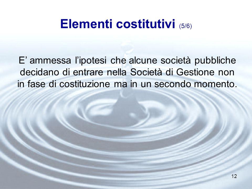 12 Elementi costitutivi (5/6) E' ammessa l'ipotesi che alcune società pubbliche decidano di entrare nella Società di Gestione non in fase di costituzione ma in un secondo momento.