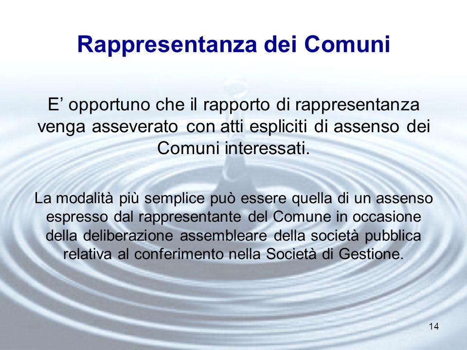 14 Rappresentanza dei Comuni E' opportuno che il rapporto di rappresentanza venga asseverato con atti espliciti di assenso dei Comuni interessati.