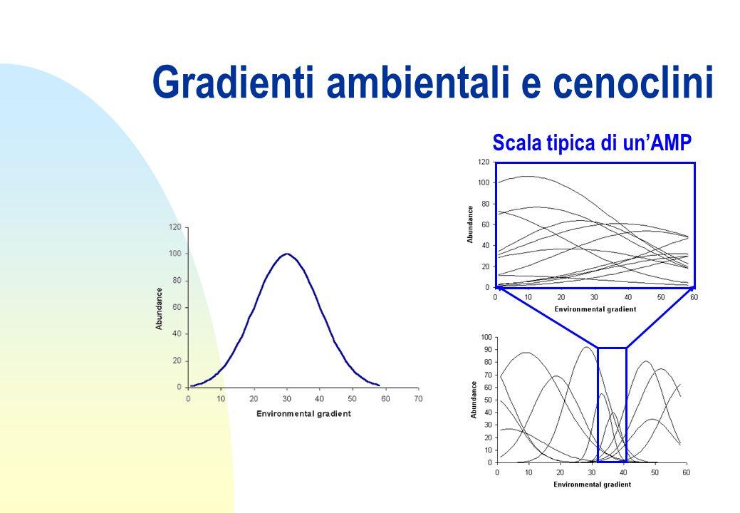 Gradienti ambientali e cenoclini Scala tipica di un'AMP