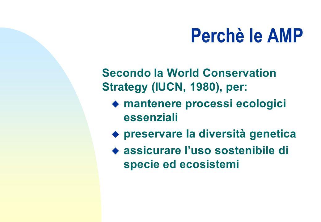 Perchè le AMP Secondo la World Conservation Strategy (IUCN, 1980), per: u mantenere processi ecologici essenziali u preservare la diversità genetica u assicurare l'uso sostenibile di specie ed ecosistemi