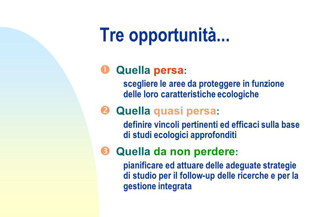 Tre opportunità...