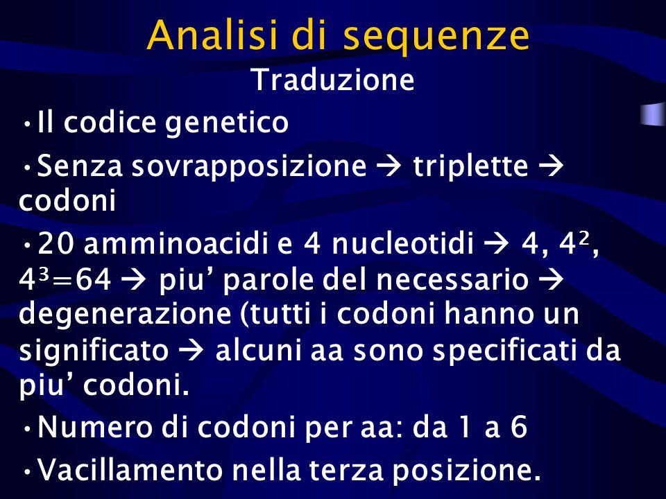 Traduzione Il codice genetico Senza sovrapposizione  triplette  codoni 20 amminoacidi e 4 nucleotidi  4, 4 2, 4 3 =64  piu' parole del necessario  degenerazione (tutti i codoni hanno un significato  alcuni aa sono specificati da piu' codoni.