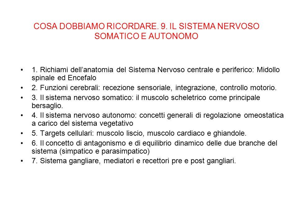 COSA DOBBIAMO RICORDARE. 9. IL SISTEMA NERVOSO SOMATICO E AUTONOMO 1. Richiami dell'anatomia del Sistema Nervoso centrale e periferico: Midollo spinal