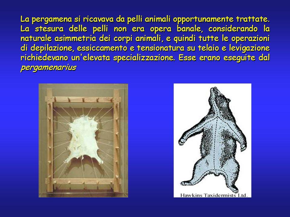 La pergamena si ricavava da pelli animali opportunamente trattate.