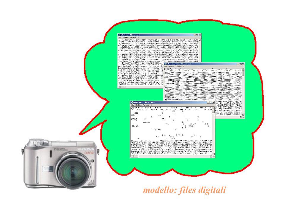 modello: files digitali