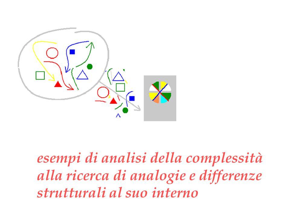 esempi di analisi della complessità alla ricerca di analogie e differenze strutturali al suo interno
