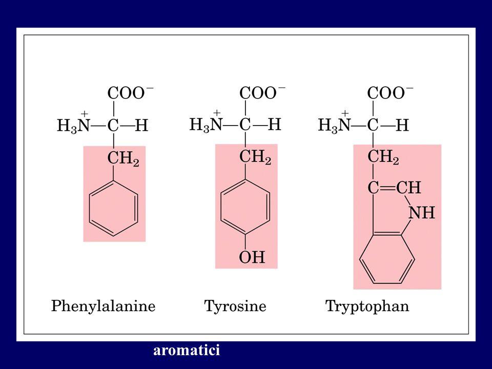 aromatici