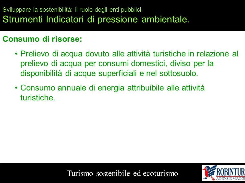 Sviluppare la sostenibilità: il ruolo degli enti pubblici. Strumenti Indicatori di pressione ambientale. Turismo sostenibile ed ecoturismo Consumo di