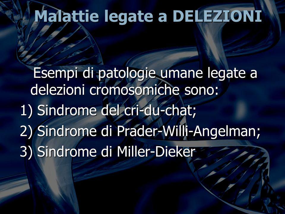 Malattie legate a DELEZIONI Esempi di patologie umane legate a delezioni cromosomiche sono: Esempi di patologie umane legate a delezioni cromosomiche sono: 1) Sindrome del cri-du-chat; 2) Sindrome di Prader-Willi-Angelman; 3) Sindrome di Miller-Dieker