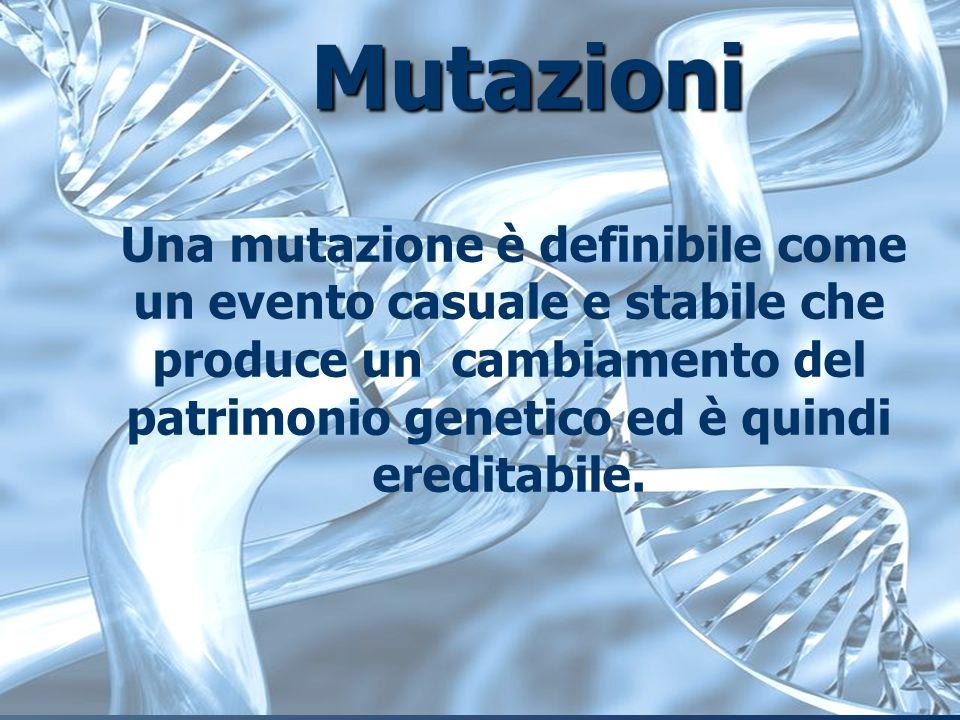 Mutazioni Una mutazione è definibile come un evento casuale e stabile che produce un cambiamento del patrimonio genetico ed è quindi ereditabile.