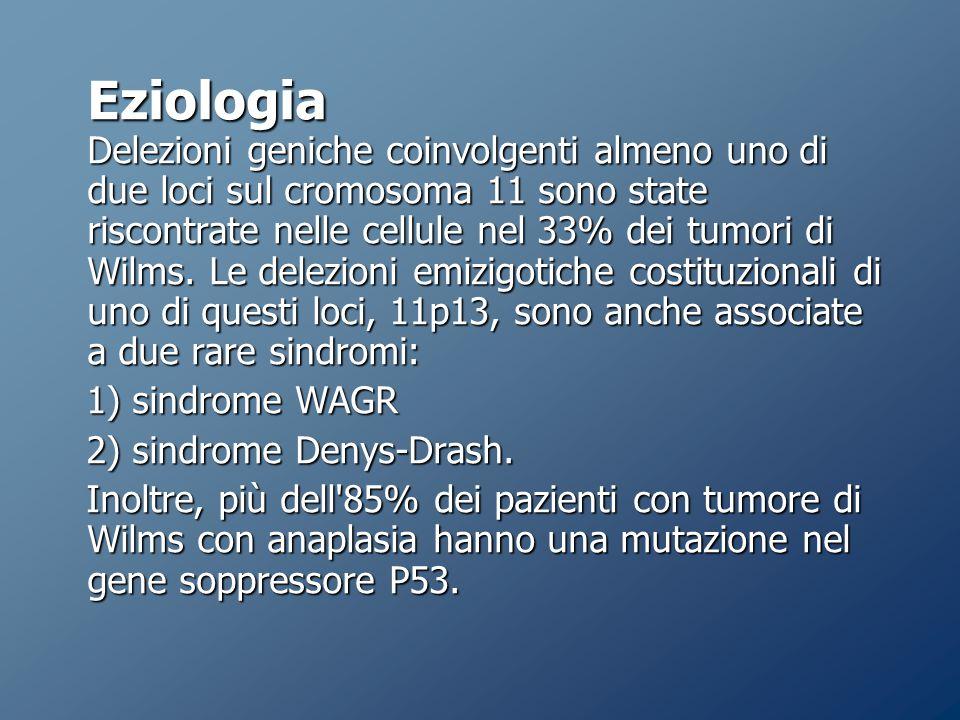 Eziologia Delezioni geniche coinvolgenti almeno uno di due loci sul cromosoma 11 sono state riscontrate nelle cellule nel 33% dei tumori di Wilms.