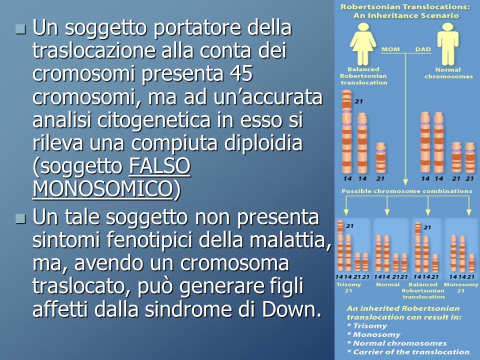 Un soggetto portatore della traslocazione alla conta dei cromosomi presenta 45 cromosomi, ma ad un'accurata analisi citogenetica in esso si rileva una compiuta diploidia (soggetto FALSO MONOSOMICO) Un soggetto portatore della traslocazione alla conta dei cromosomi presenta 45 cromosomi, ma ad un'accurata analisi citogenetica in esso si rileva una compiuta diploidia (soggetto FALSO MONOSOMICO) Un tale soggetto non presenta sintomi fenotipici della malattia, ma, avendo un cromosoma traslocato, può generare figli affetti dalla sindrome di Down.