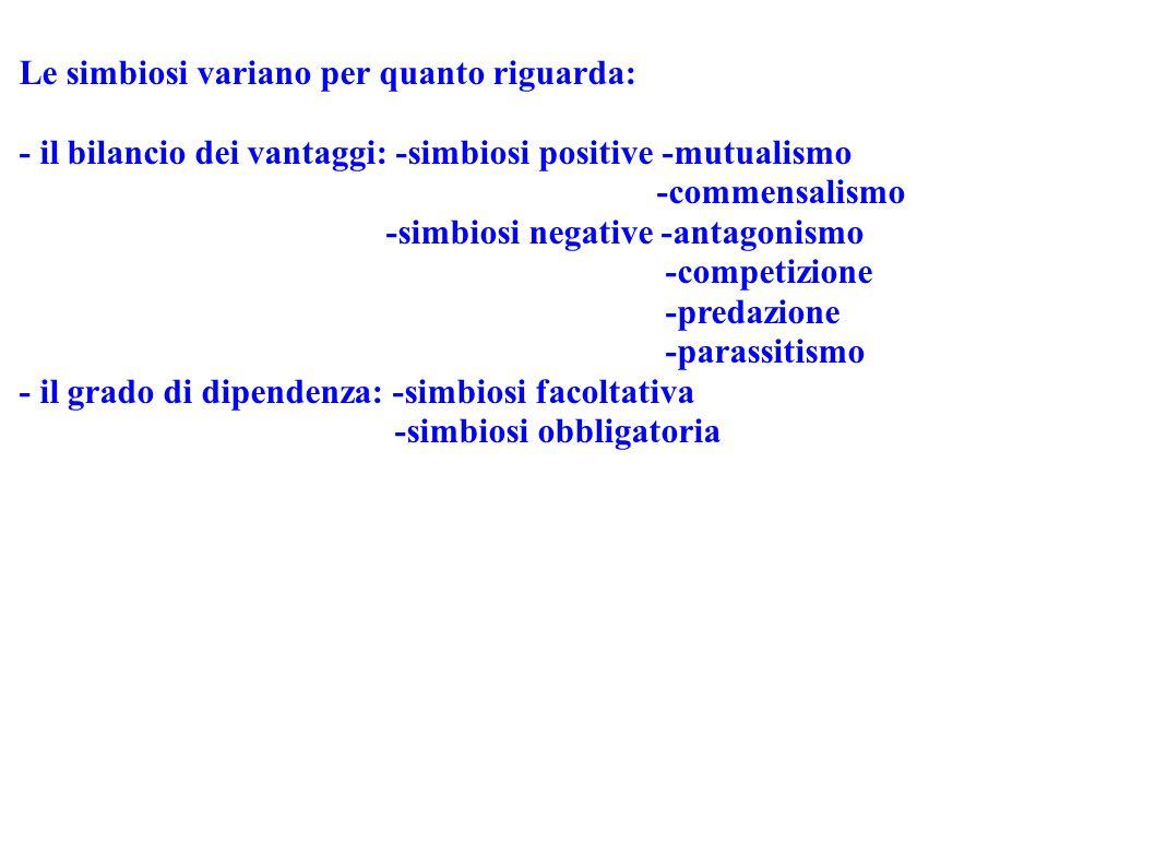 Le simbiosi variano per quanto riguarda: - il bilancio dei vantaggi: -simbiosi positive -mutualismo -commensalismo -simbiosi negative -antagonismo -co